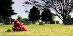 roses-in-cemetery-sm-300x150