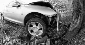 Car Against A Tree, Italy